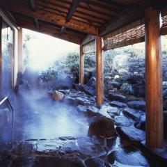 Aso Villa Park Hotel Минамиогуни бассейн фото 3