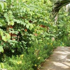 Отель Bauhinia Resort фото 2