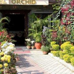 Отель Orchid Непал, Покхара - отзывы, цены и фото номеров - забронировать отель Orchid онлайн фото 3
