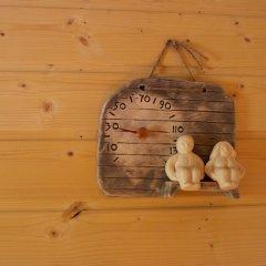 Отель SResort Sauna Villas Финляндия, Лаппеэнранта - отзывы, цены и фото номеров - забронировать отель SResort Sauna Villas онлайн сауна