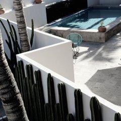Отель Six Two Four Hotel Мексика, Сан-Хосе-дель-Кабо - отзывы, цены и фото номеров - забронировать отель Six Two Four Hotel онлайн фото 4