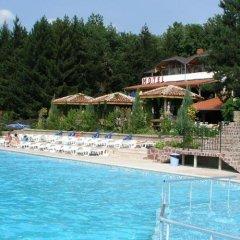 Отель Grivitsa Болгария, Плевен - отзывы, цены и фото номеров - забронировать отель Grivitsa онлайн бассейн фото 2