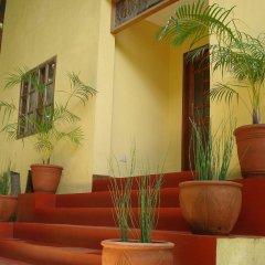 Отель Sun Garden Hilltop Resort Филиппины, остров Боракай - отзывы, цены и фото номеров - забронировать отель Sun Garden Hilltop Resort онлайн интерьер отеля фото 3