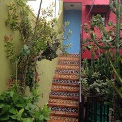 Отель Casa de las Flores Мексика, Тлакуепакуе - отзывы, цены и фото номеров - забронировать отель Casa de las Flores онлайн фото 15