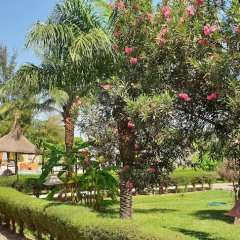 Djeliba Hotel in Kololi, Gambia from 201$, photos, reviews - zenhotels.com photo 10