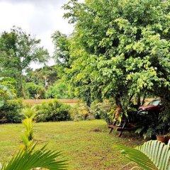 Отель Fanta Lodge Филиппины, Пуэрто-Принцеса - отзывы, цены и фото номеров - забронировать отель Fanta Lodge онлайн фото 16