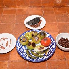 Отель Casa Coyoacan Мехико с домашними животными