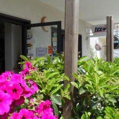 Hotel Donatello Альберобелло фото 3