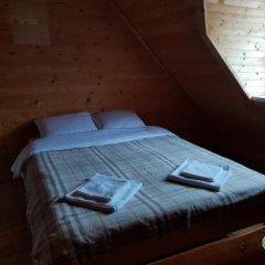 Гостиница Dream Forest Украина, Волосянка - отзывы, цены и фото номеров - забронировать гостиницу Dream Forest онлайн детские мероприятия