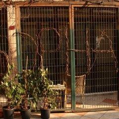 Taksim Sopha Hostel фото 9