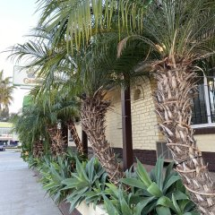 Апартаменты El Patio Inn Studio City Лос-Анджелес фото 5
