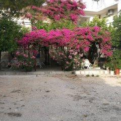 Отель Studios Marianna Греция, Эгина - отзывы, цены и фото номеров - забронировать отель Studios Marianna онлайн фото 8