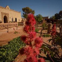 Отель Kasbah Bivouac Lahmada Марокко, Мерзуга - отзывы, цены и фото номеров - забронировать отель Kasbah Bivouac Lahmada онлайн детские мероприятия