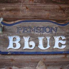 Отель Pension Blue Хакуба развлечения