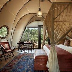 Отель Wild Coast Tented Lodge - All Inclusive Шри-Ланка, Тиссамахарама - отзывы, цены и фото номеров - забронировать отель Wild Coast Tented Lodge - All Inclusive онлайн комната для гостей фото 2