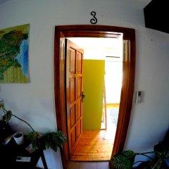 Отель Funky Monkey Hostel Болгария, Пловдив - отзывы, цены и фото номеров - забронировать отель Funky Monkey Hostel онлайн интерьер отеля
