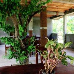 Отель Lavish Eco Jungle интерьер отеля