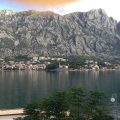 Отель Splendido Черногория, Доброта - отзывы, цены и фото номеров - забронировать отель Splendido онлайн приотельная территория фото 2