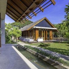 Отель Into The Forest Resort фото 5