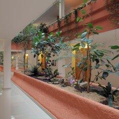 Отель San Carlos Испания, Курорт Росес - отзывы, цены и фото номеров - забронировать отель San Carlos онлайн интерьер отеля фото 2
