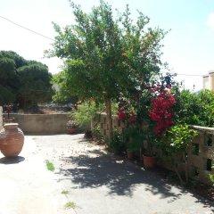 Отель Pizania Греция, Калимнос - отзывы, цены и фото номеров - забронировать отель Pizania онлайн фото 5