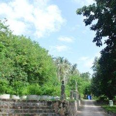 Отель Koh Tao Garden Resort фото 3