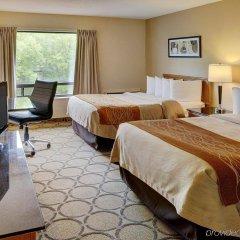 Отель Comfort Inn Ottawa West Kanata Канада, Оттава - отзывы, цены и фото номеров - забронировать отель Comfort Inn Ottawa West Kanata онлайн комната для гостей фото 4