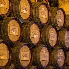 The Wine House Hotel - Quinta da Pacheca развлечения