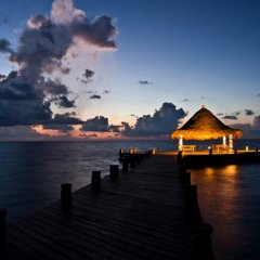 Отель Desire Riviera Maya Pearl Resort All Inclusive- Couples Only фото 4