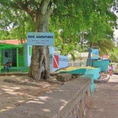 Отель Tropical Hideaway с домашними животными