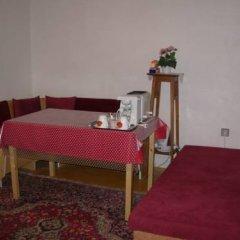 Отель Penzion Hlinkova Чехия, Пльзень - отзывы, цены и фото номеров - забронировать отель Penzion Hlinkova онлайн помещение для мероприятий