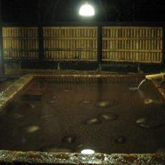 Отель Shinmeikan Япония, Минамиогуни - отзывы, цены и фото номеров - забронировать отель Shinmeikan онлайн бассейн