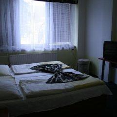 Отель Vltava Чехия, Ржеж - отзывы, цены и фото номеров - забронировать отель Vltava онлайн комната для гостей фото 3