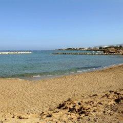 Отель Venus Beach Hotel Кипр, Пафос - 3 отзыва об отеле, цены и фото номеров - забронировать отель Venus Beach Hotel онлайн с домашними животными