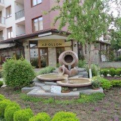 Отель Apollon Apartments Болгария, Несебр - отзывы, цены и фото номеров - забронировать отель Apollon Apartments онлайн фото 4