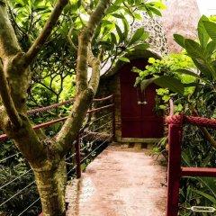 Отель Dao Anh Khanh Treehouse Ханой фото 10