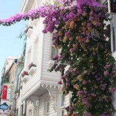 Отель Romantic Mansion фото 5