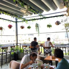 Cherish Central Hotel & Apartment гостиничный бар