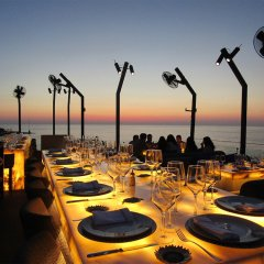 Warwick Palm Beach Hotel фото 2