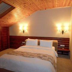 Gazelle Resort & Spa Турция, Болу - отзывы, цены и фото номеров - забронировать отель Gazelle Resort & Spa онлайн комната для гостей фото 4