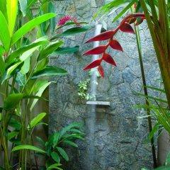 Отель Reef Villa and Spa Шри-Ланка, Ваддува - отзывы, цены и фото номеров - забронировать отель Reef Villa and Spa онлайн