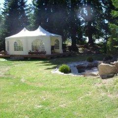 Отель Mountain Lake Hotel Болгария, Чепеларе - отзывы, цены и фото номеров - забронировать отель Mountain Lake Hotel онлайн фото 10