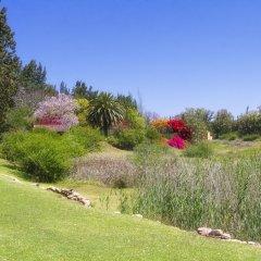Отель Kelvin Grove Guest House Южная Африка, Аддо - отзывы, цены и фото номеров - забронировать отель Kelvin Grove Guest House онлайн приотельная территория