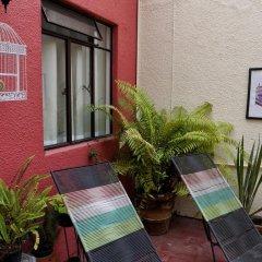 Отель Hostel Hospedarte Centro Мексика, Гвадалахара - отзывы, цены и фото номеров - забронировать отель Hostel Hospedarte Centro онлайн фото 2