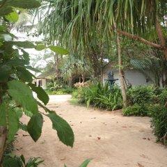 Отель Lanta Island Resort фото 15