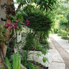 Отель The Krabi Forest Homestay фото 17