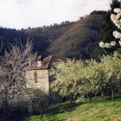 Отель Agriturismo Luce Реггелло приотельная территория фото 2
