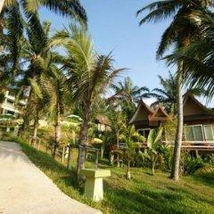 Отель Palm Paradise Resort детские мероприятия фото 2