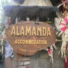 Отель Alamanda Accomodation спортивное сооружение