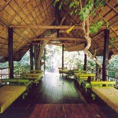 Отель Ella Jungle Resort Шри-Ланка, Бандаравела - отзывы, цены и фото номеров - забронировать отель Ella Jungle Resort онлайн фото 10